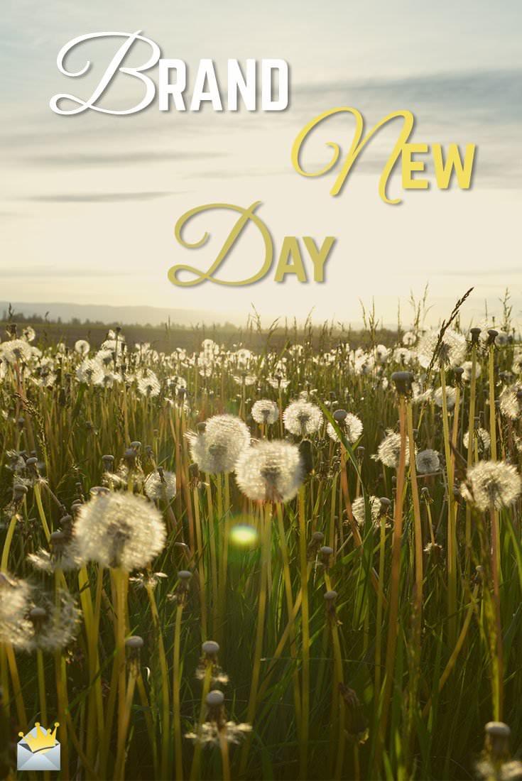 Brand-New-Day