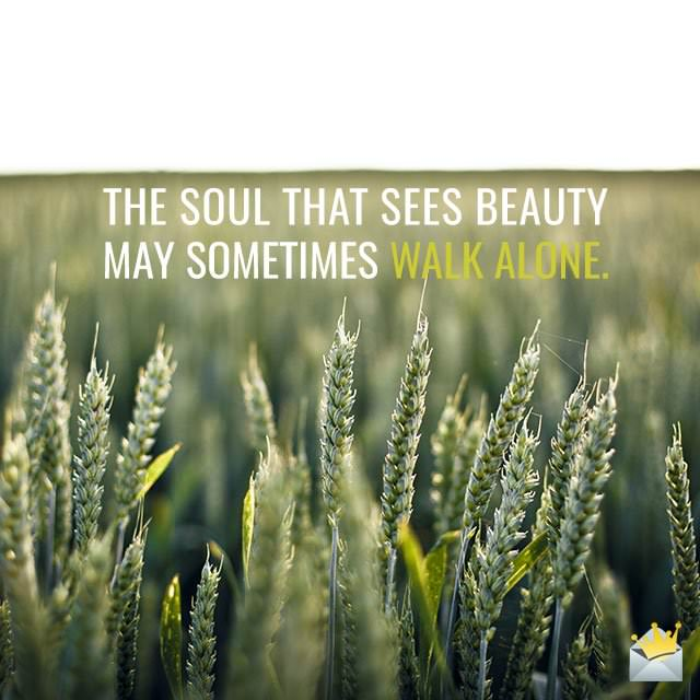 The-soul-that-sees-beauty