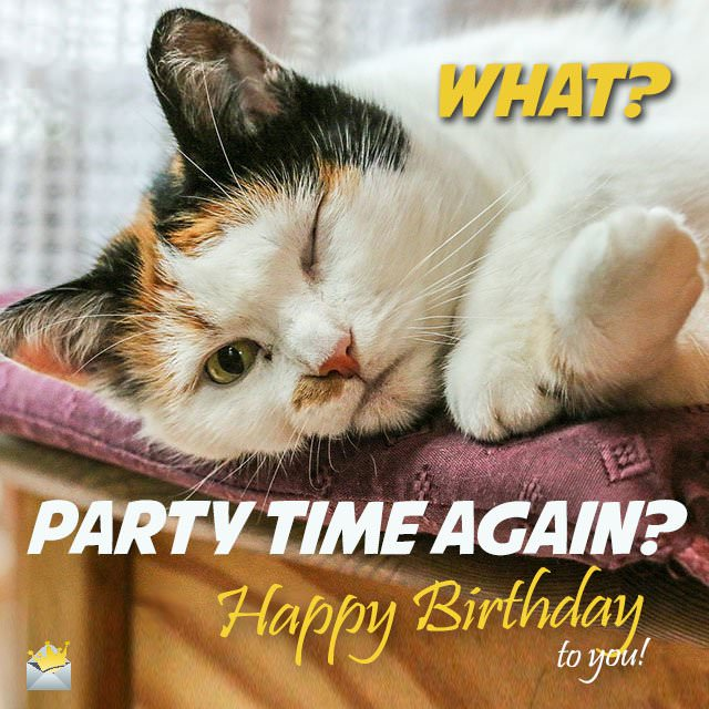 What? Party time again? - Happy Birthday to you!