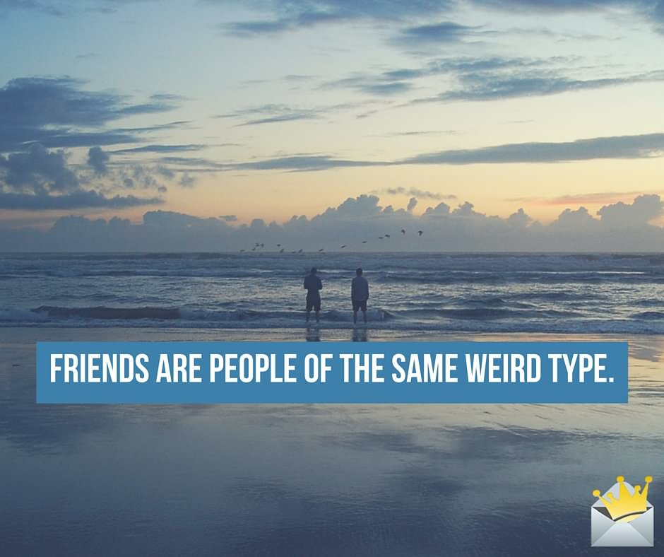 Friends are people of the same weird type.