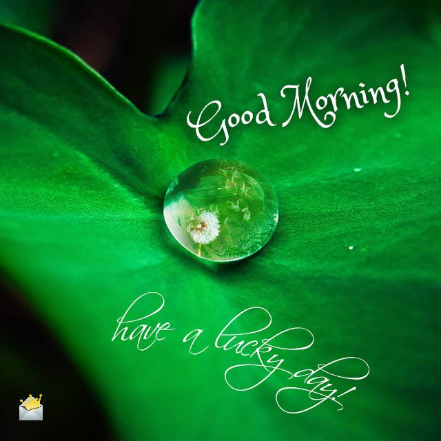 Good-Morning-Have-a-lucky-day