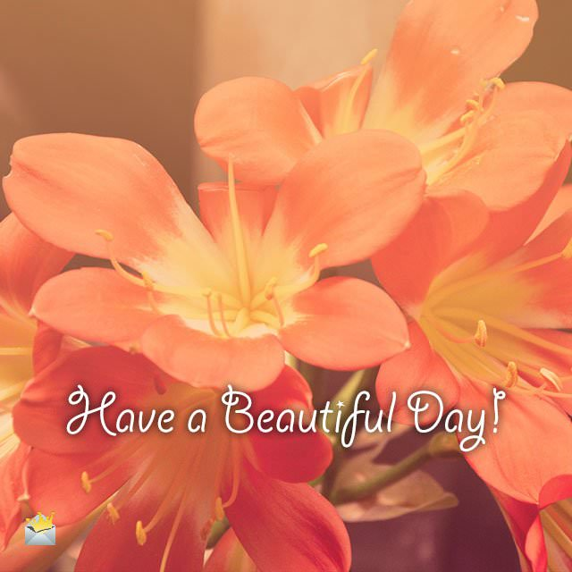 Have-a-beautiful-Day