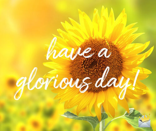 Have a glorious day.