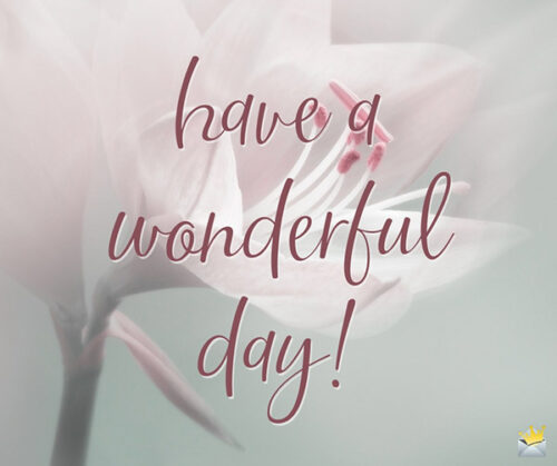 Have a wonderful day.