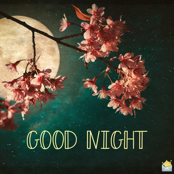 The Best Good Night Images A Sweet Kiss Goodnight