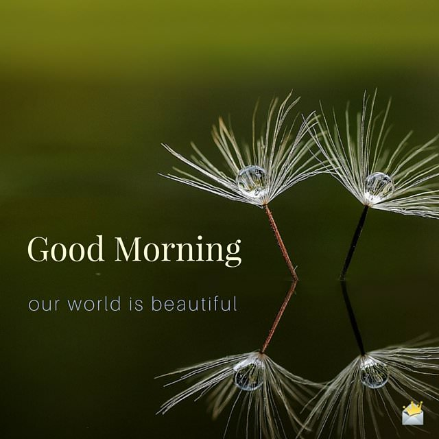 Good Morning image with peaceful picture