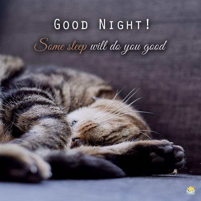 Good night! Some sleep will do you good.