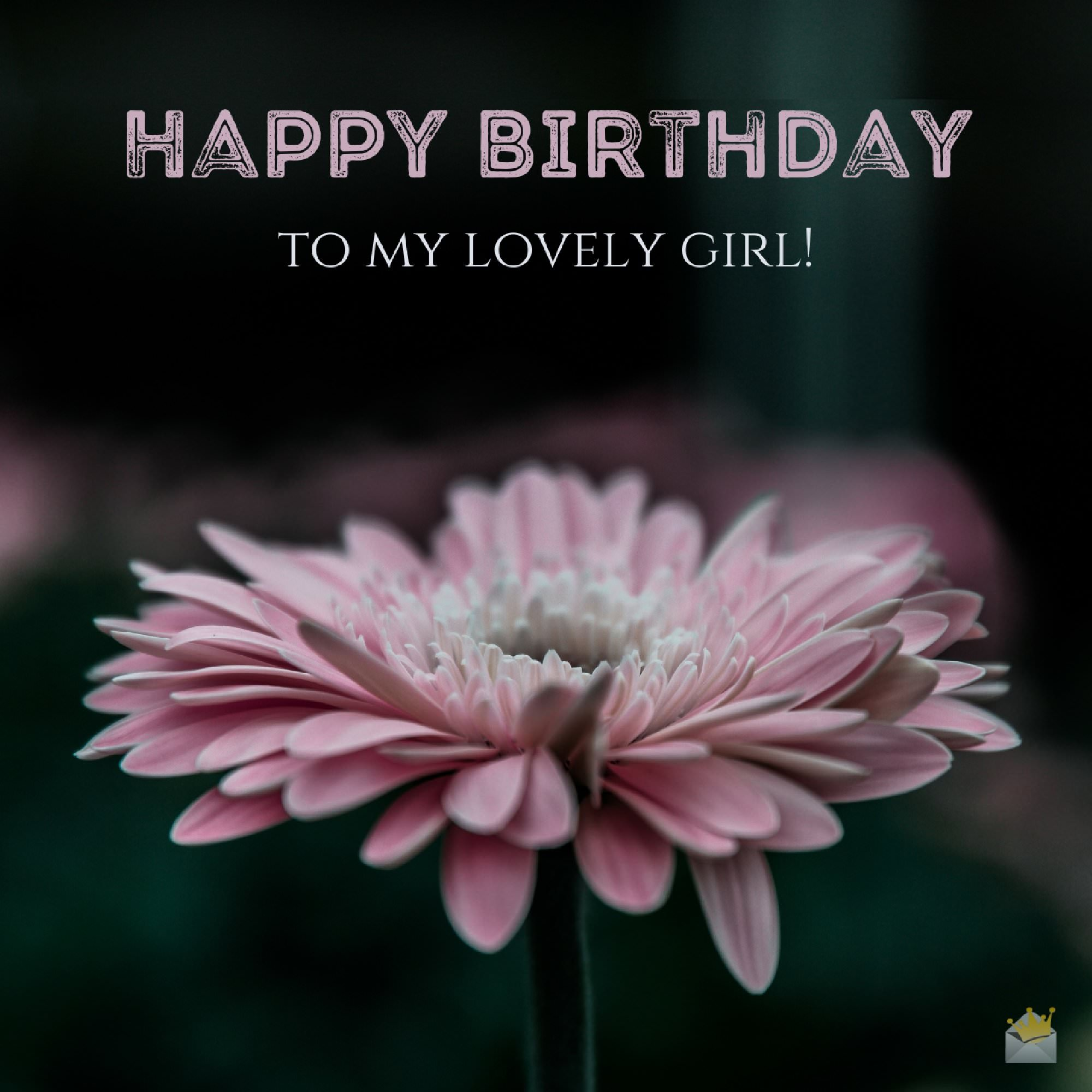 Happy Birthday Love Quotes For Her 174 Cute Birthday Messages  Happy Birthday To My Girlfriend