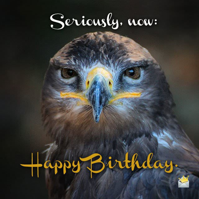 Cute Animals And Funny Happy Birthday Wishes Animals Wishing Happy Birthday