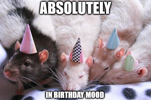 Absolutely in birthday mood.