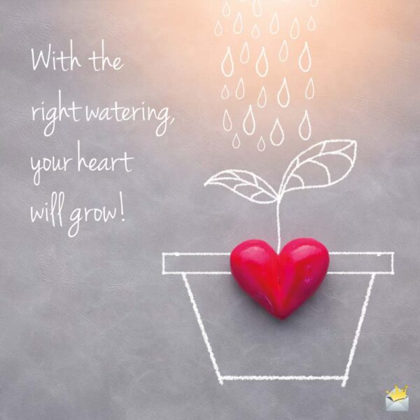 With the right watering, your heart will grow.