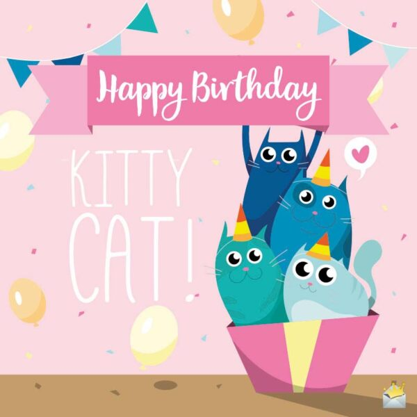 Happy Birthday, Kitty Cat!