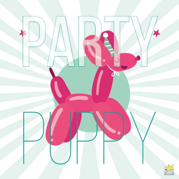 Party Puppy