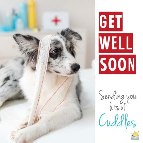 Get well soon. Sending you lots of cuddles.