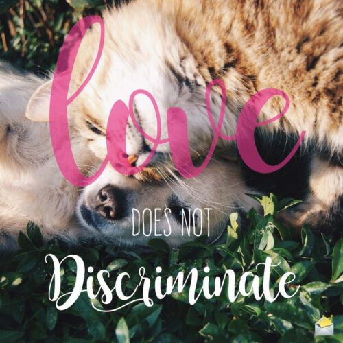 Love Does Not Discriminate.