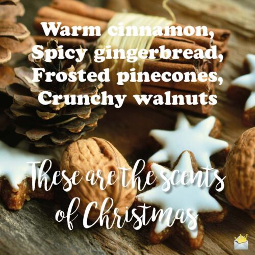 These are the scents of Christmas.