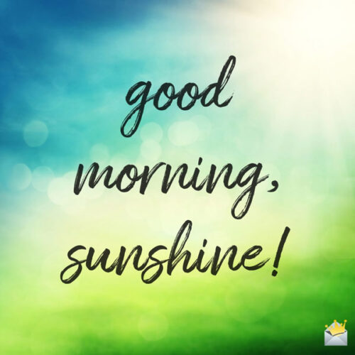 Good morning, sunshine!