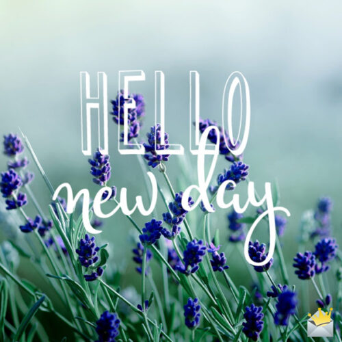 Hello, new day.