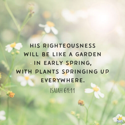 Bible verse for morning inspiration. On image with flowers for easy sharing.
