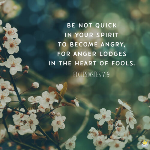 Bible verse about anger on image for easy sharing.