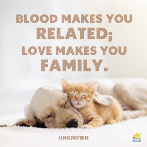 Cute short quote for blended family.