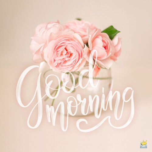 Good morning image with roses.