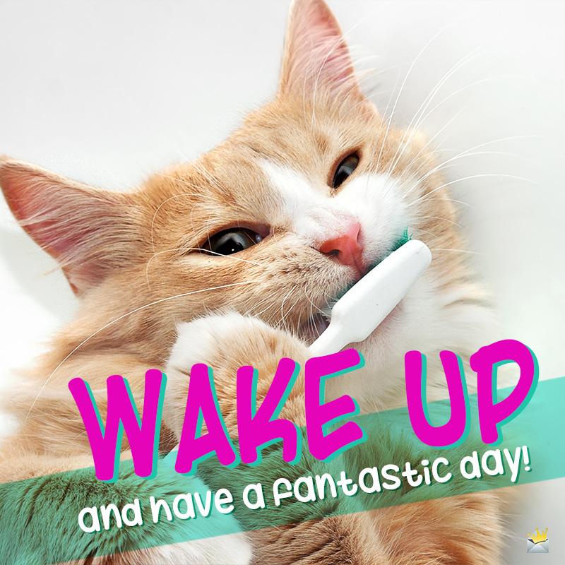 99 Funny Ways to Say Good Morning