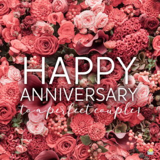 Happy Anniversary wish for couple.