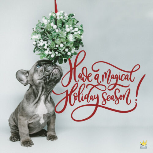 Christmas message on image with cute dog.