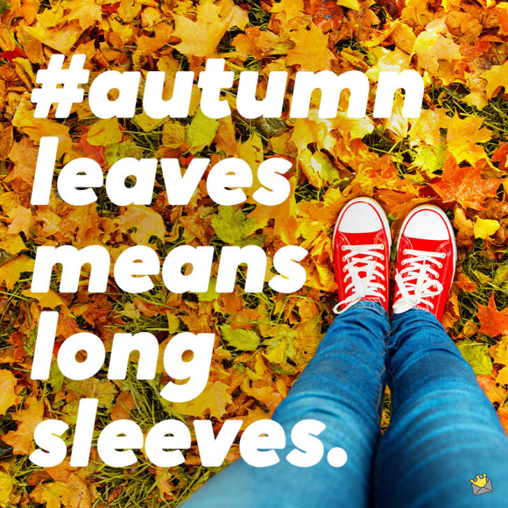 Autumn Leaves Are Brown | 90+ Fall Captions for Instagram Pics
