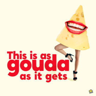 Funny cheese pun.